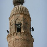 hasankayef, le ultime cicogne
